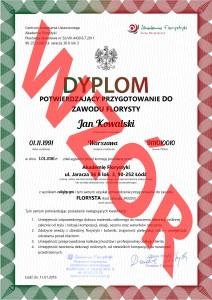 dyplom FLORYSTY