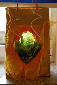 Torba na prezent z roślinami