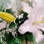bukiecik z białych lilii