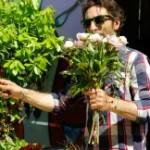 florysta mistrz