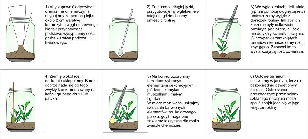 kwiaty-w-szKwiaty w szkle - schemat wykonania terrarium