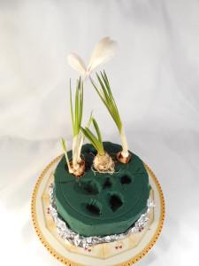 wiosenny-tort-z-kwiatów (8)
