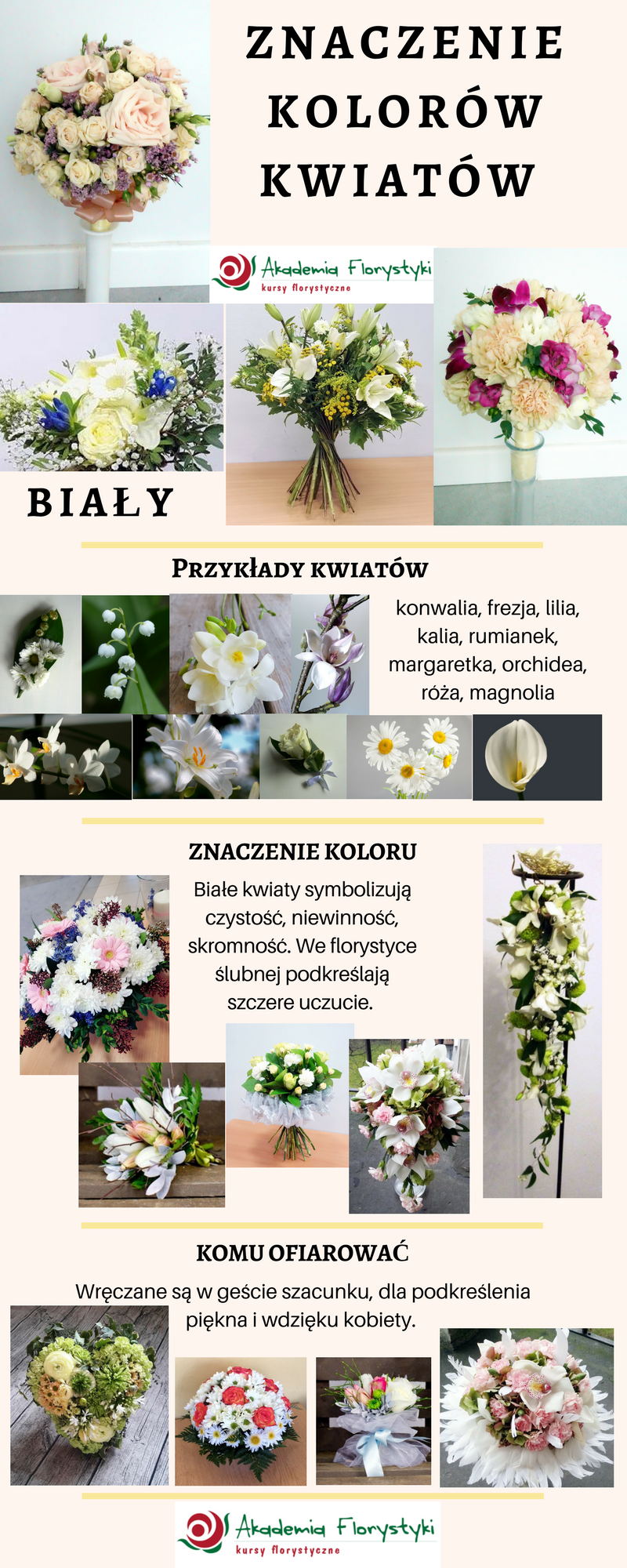 znaczenie kolorów kwiatów - kwiaty białe