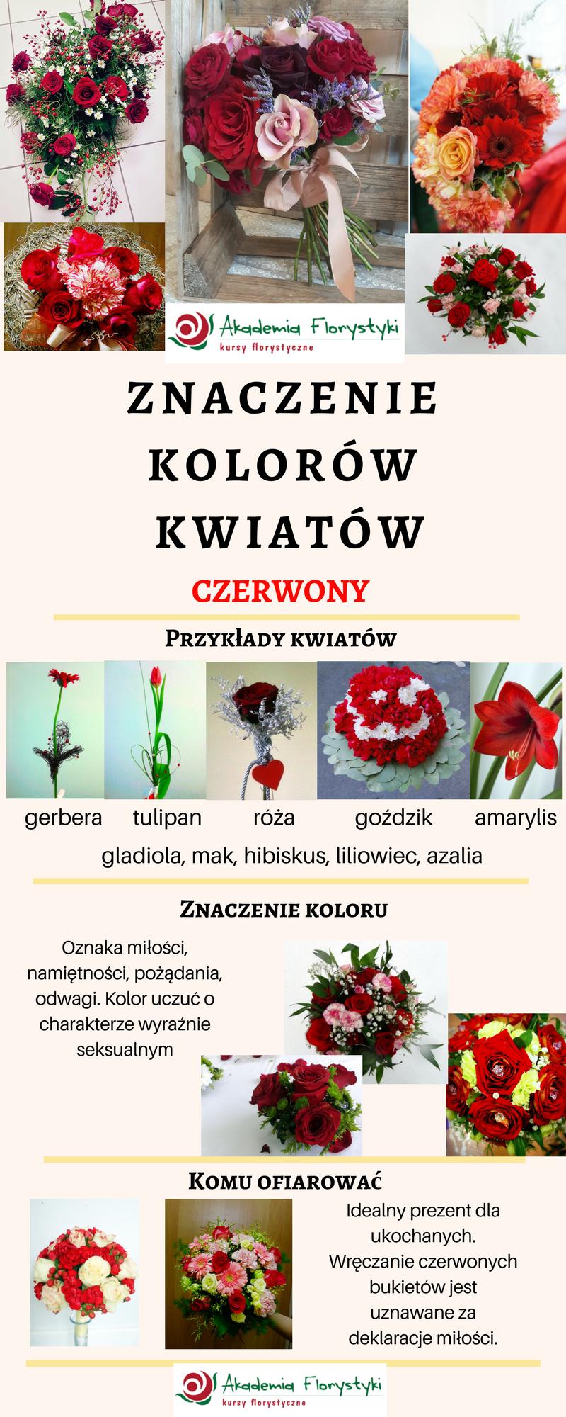 znaczenie kolorów kwiatów - kwiaty czerwone