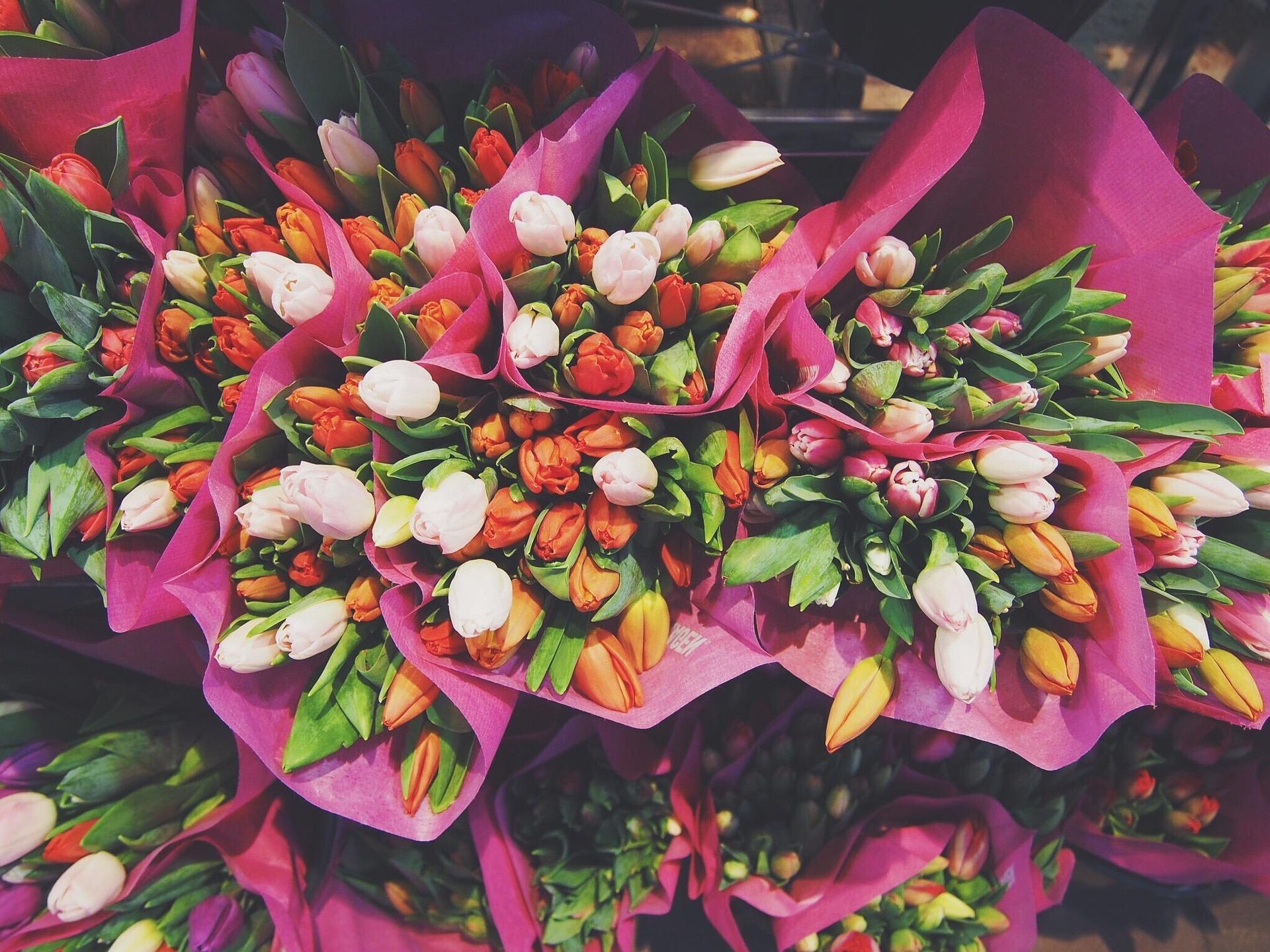 świeżość kawiatów - kwiaty cięte