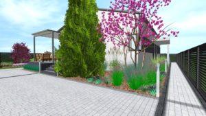 projekt ogrodu - rośliny