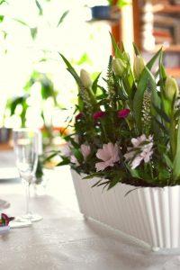 chrzest - tulipan
