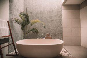 rośliny do łazienki - minimalizm