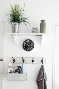 rośliny do łazienki - w doniczce