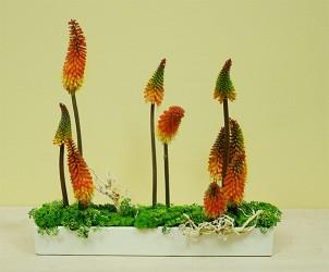 Dekoracja florystyczna w naczyniu