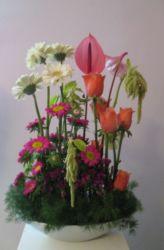 kompozycja w naczyniu różowa