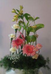 kompozycja w naczyniu z różowymi kwiatami